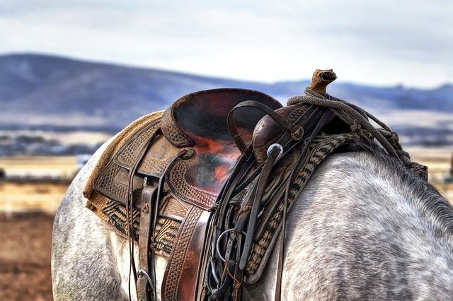 sattelschrank western